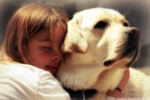 A kutyatámadások ellen - A gyermekek védelmében