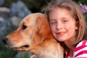 Kutyakölcsönzés stresszeseknek!