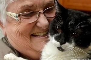 Huszonhét éves lett a világ legvénebb macskája