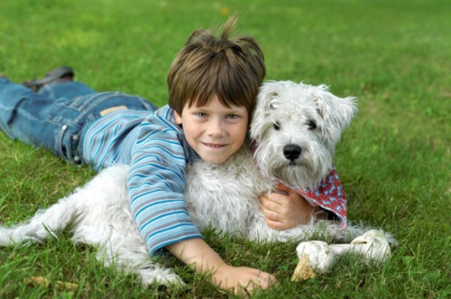 kutya_gyerek_immunrendszer