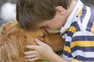 A kutya erősíti a gyerek immunrendszerét
