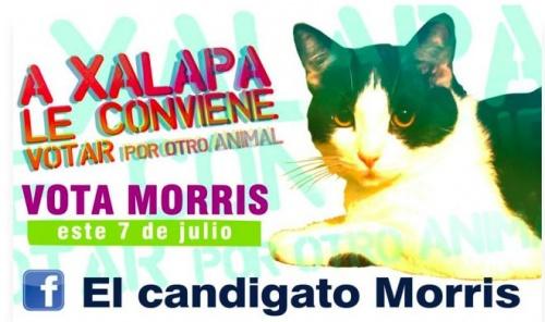 xalapa_morris