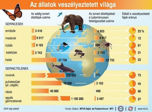 Állatok veszélyeztett világa