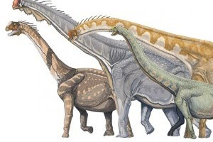 Százhatvanmillió éves dinoszaurusz-maradványokra találtak Délnyugat-Kínában