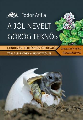 gorokteki_konyv