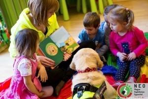 Pillants bele a segítő kutyák izgalmas világába!