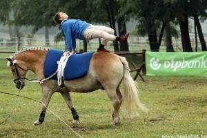 Ismét lovasterápiás verseny Fóton