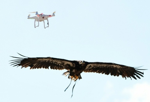 dron3
