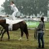 Ezen a hétvégén a lovaké és lovasaiké a főszerep Fóton
