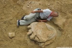 Gigantikus dinoszaurusz-lábnyomot fedeztek fel a Góbi sivatagban
