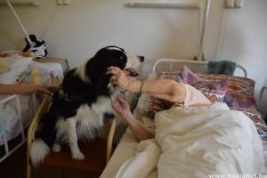 Idősek Világnapja: Értelmi sérültek kutyás terápiás képzését segítik idősek