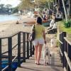 A kutyasétáltatás jót tesz az egészségnek és növeli a környékbeliek biztonságérzetét