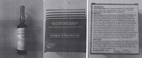 neostoman