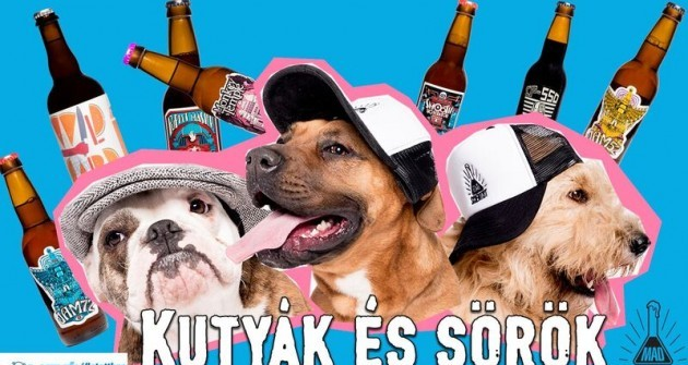Kutya és sör - fogadd örökbe, egy rekesz sör jár hozzá!