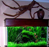 akvarium-butorok