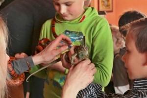 TURÁ-ZOO: mini állatkert, ami házhoz megy