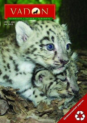 vadon-magazin