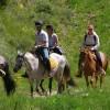 Új típusú lóútleveleket vezetett be július 1-jétől a NÉBIH