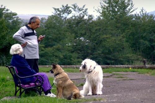 idosek_kutyaval