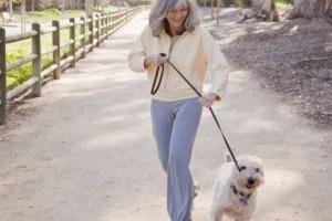 Az idősebb embereknek receptre kellene kutyát felírni, hogy többet mozogjanak