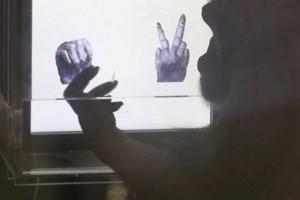 Csimpánzoknak tanították meg a kő-papír-olló játékszabályait japán kutatók