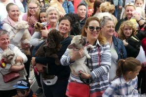 Közel ezren vettek részt az V. örökbefogadott Állatok Napján