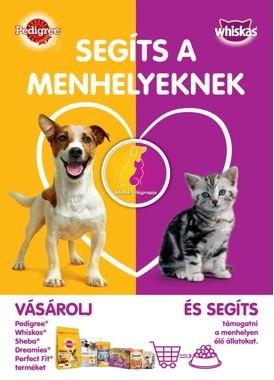 menhely_kampany