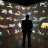 Virtuális bárka készül köztük magyar állatokkal