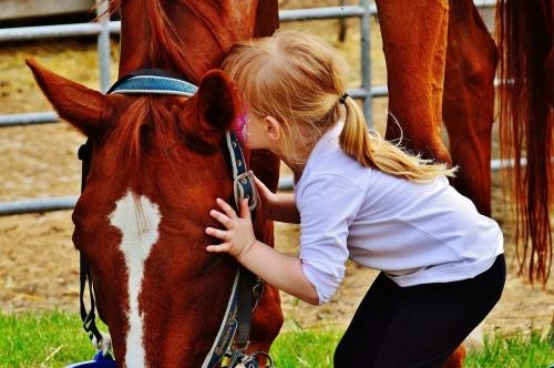 szeretem_lovakat