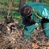 Két új méreg- és tetemkereső kutya szolgálatra kész!
