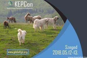 Minden a pásztorkutyákról - konferencia Szegeden