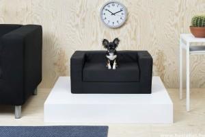 Kutya-macska kényelem az Ikeánál