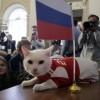 Egy futballcsapatnyi állat jósolja a meccsek eredményét Oroszországban