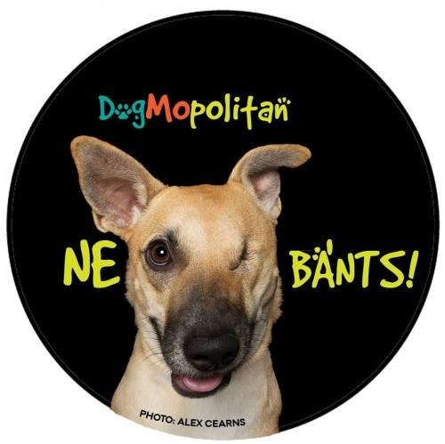 dogmopolitan1