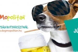 A felelős állattartásra fókuszál a DogMopolitan Kutyafesztivál