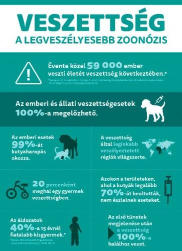 veszettseg_info