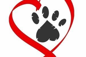 Állatbarát Plakátpályázat 2018 értékes nyereménnyel