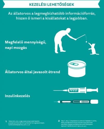 cukorbeteg_kezeles