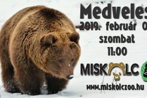 Február első hétvégéjén országszerte időjósló medveles