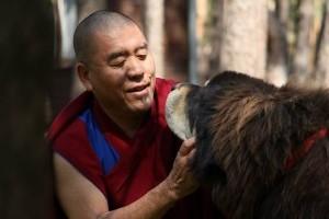 Buddhista jógik és kutyáik - márciusban közös séta
