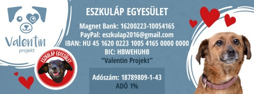 valentin_project