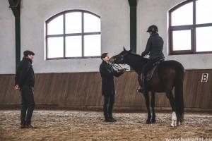 Magyarországon tart előadást Christofer Dahlgren svéd lovasmester
