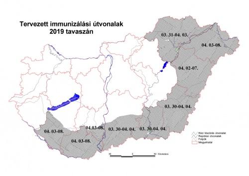 2019_tavaszi_rkavakcinzs_honlapra_trkp