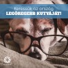 Keresik Magyarország legöregebb kutyáját!