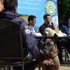 A szívférgesség mellett egy újabb kór is fenyegeti a kutyákat