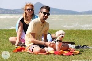 Balatoni kutyás programok a nyárra