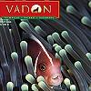 VADON MAGAZIN - 2006. ÁPRILIS