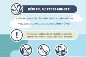 Ne etessük a vízimadarakat!