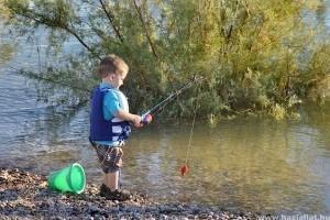 Milyen módon tudunk gondoskodni a halak védelméről?