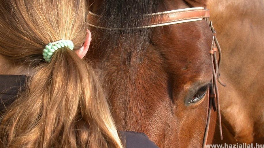ló köhögés férgek nem gyógyszer szarvasmarha szalagféreg a gyomorban
